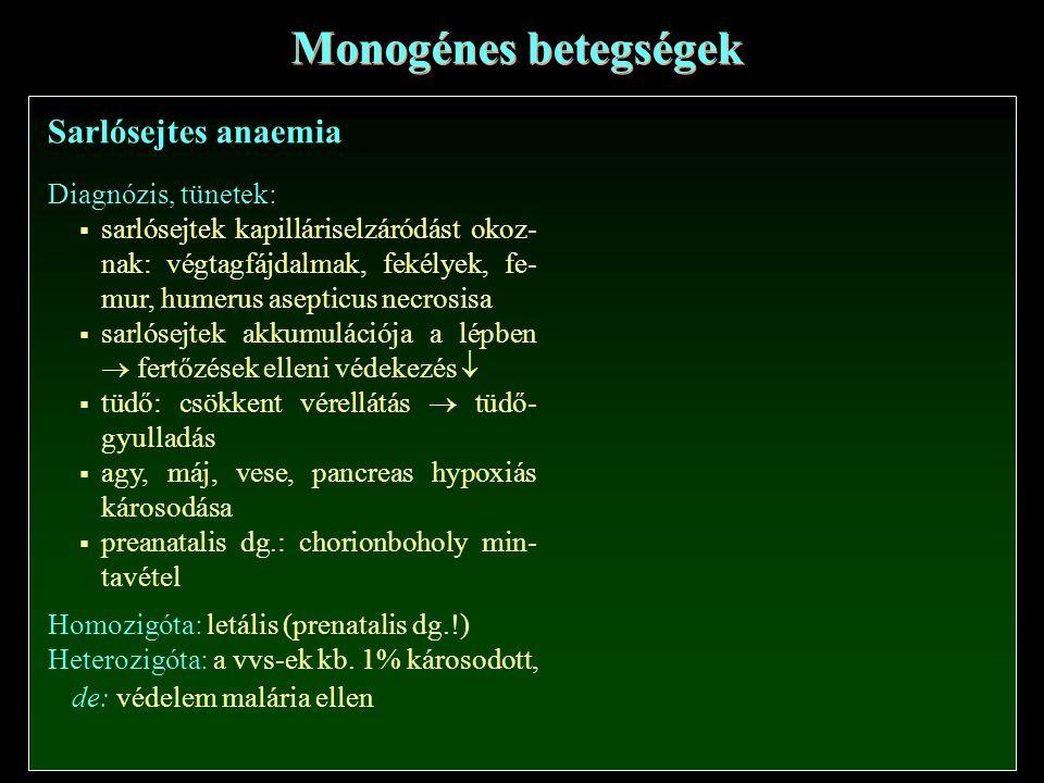 Sarlósejtes anaemia Monogénes betegségek Diagnózis, tünetek:  sarlósejtek kapilláriselzáródást okoz- nak: végtagfájdalmak, fekélyek, fe- mur, humerus asepticus necrosisa  sarlósejtek akkumulációja a lépben  fertőzések elleni védekezés   tüdő: csökkent vérellátás  tüdő- gyulladás  agy, máj, vese, pancreas hypoxiás károsodása  preanatalis dg.: chorionboholy min- tavétel Homozigóta: letális (prenatalis dg.!) Heterozigóta: a vvs-ek kb.