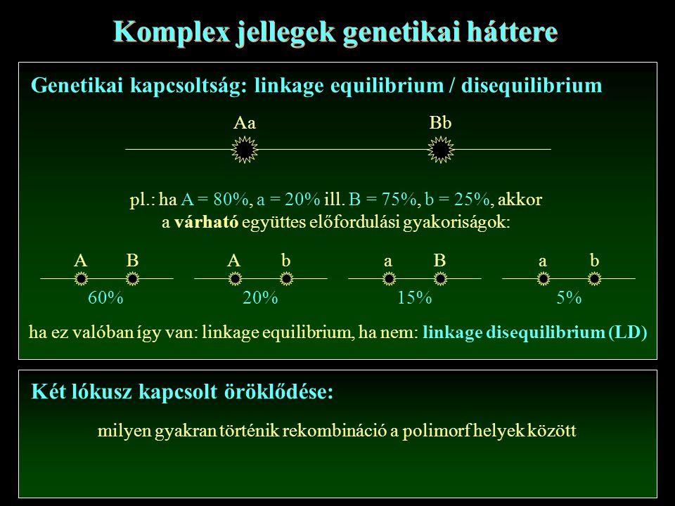 Komplex jellegek genetikai háttere Genetikai kapcsoltság: linkage equilibrium / disequilibrium AaBb pl.: ha A = 80%, a = 20% ill.