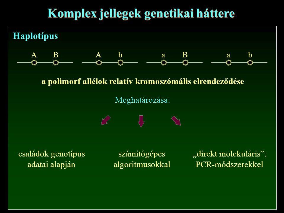 """Komplex jellegek genetikai háttere Haplotípus ABAbaBab a polimorf allélok relatív kromoszómális elrendeződése Meghatározása: családok genotípus adatai alapján számítógépes algoritmusokkal """"direkt molekuláris : PCR-módszerekkel"""