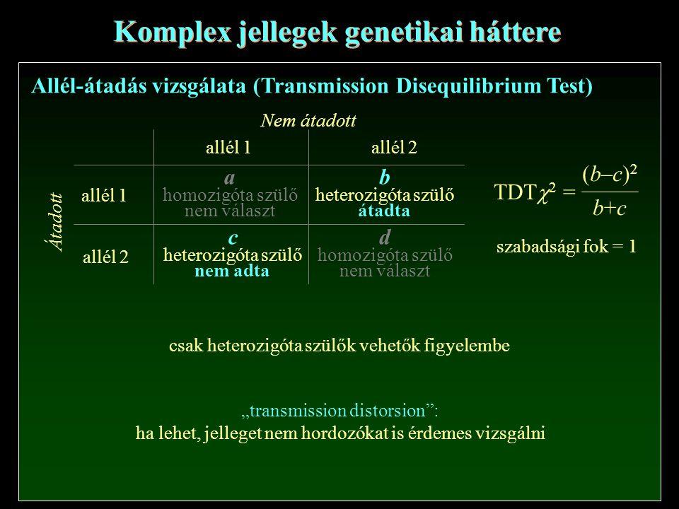 """Komplex jellegek genetikai háttere Allél-átadás vizsgálata (Transmission Disequilibrium Test) (b–c)2(b–c)2 b+cb+c TDT  2 = allél 1allél 2 allél 1 allél 2 a homozigóta szülő nem választ d homozigóta szülő nem választ b heterozigóta szülő átadta c heterozigóta szülő nem adta Nem átadott Átadott szabadsági fok = 1 csak heterozigóta szülők vehetők figyelembe """"transmission distorsion : ha lehet, jelleget nem hordozókat is érdemes vizsgálni"""