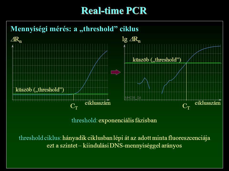 """ciklusszám RnRn CTCT Real-time PCR Mennyiségi mérés: a """"threshold ciklus ciklusszám lg  R n CTCT MHC08_G4 küszöb (""""threshold ) threshold: exponenciális fázisban threshold ciklus: hányadik ciklusban lépi át az adott minta fluoreszcenciája ezt a szintet – kiindulási DNS-mennyiséggel arányos"""