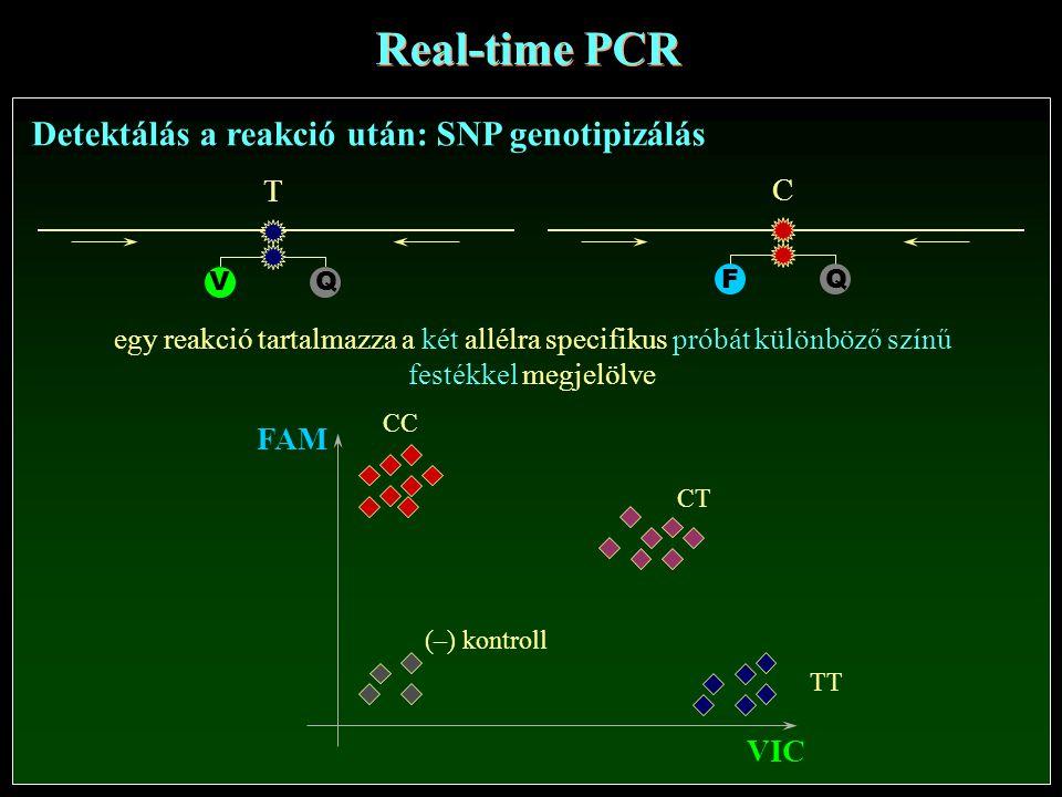 VIC FAM QV T QF C Detektálás a reakció után: SNP genotipizálás Real-time PCR (–) kontroll CC CT TT egy reakció tartalmazza a két allélra specifikus próbát különböző színű festékkel megjelölve