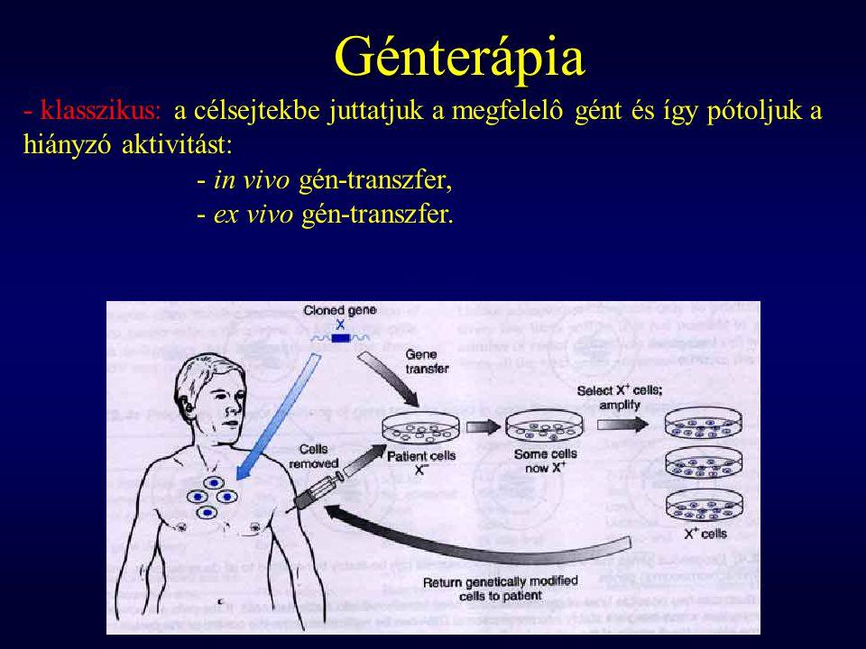 Génterápia - klasszikus: a célsejtekbe juttatjuk a megfelelô gént és így pótoljuk a hiányzó aktivitást: - in vivo gén-transzfer, - ex vivo gén-transzfer.