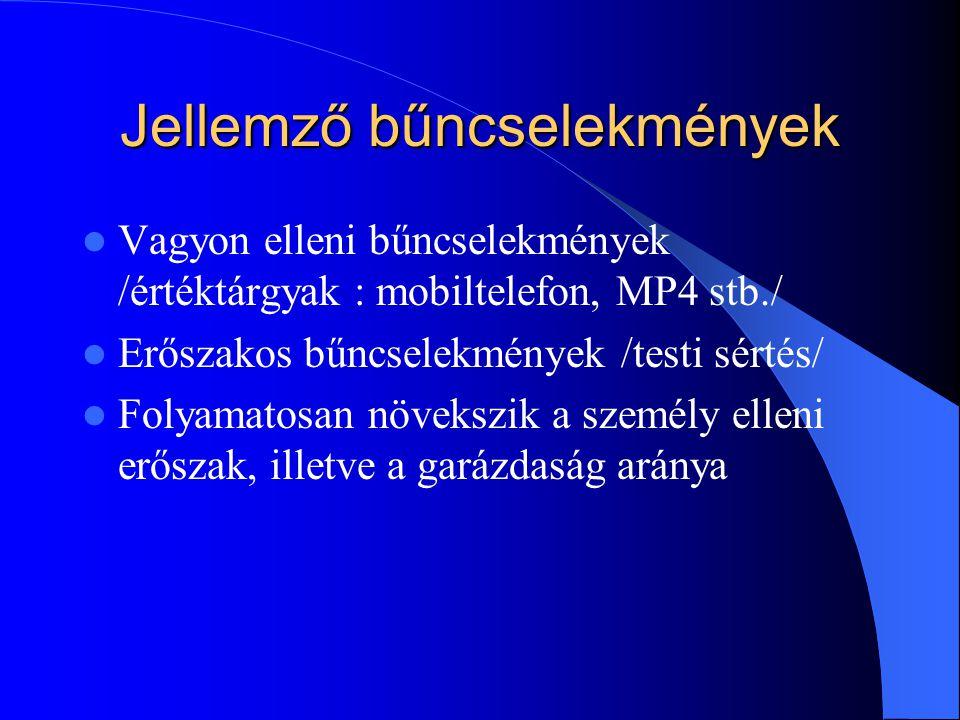 Jellemző bűncselekmények Vagyon elleni bűncselekmények /értéktárgyak : mobiltelefon, MP4 stb./ Erőszakos bűncselekmények /testi sértés/ Folyamatosan n