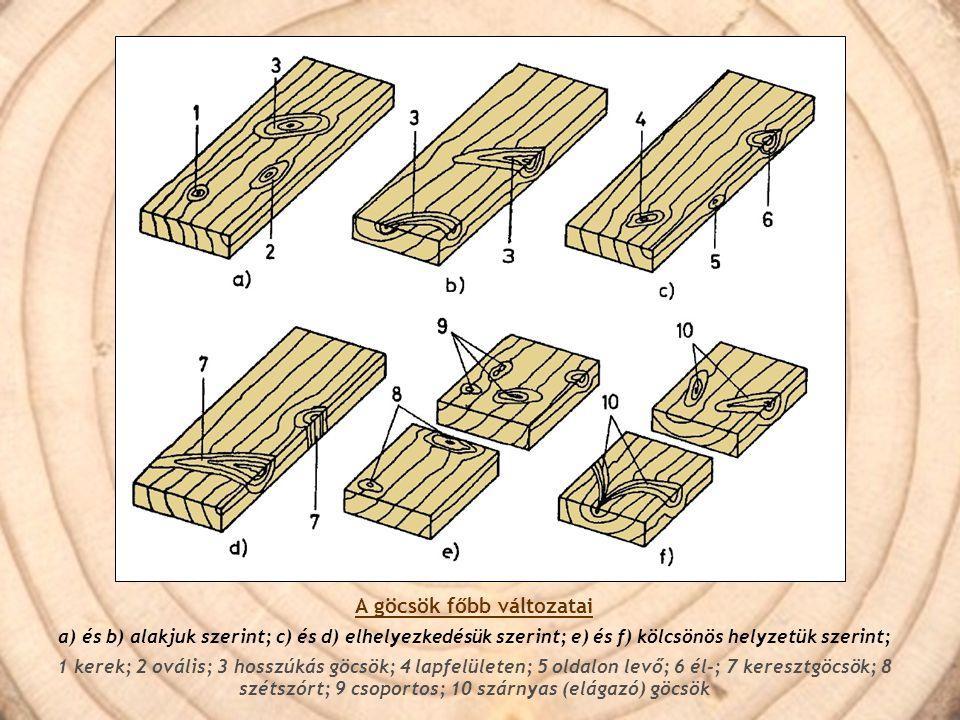 A göcsök főbb változatai a) és b) alakjuk szerint; c) és d) elhelyezkedésük szerint; e) és f) kölcsönös helyzetük szerint; 1 kerek; 2 ovális; 3 hosszú
