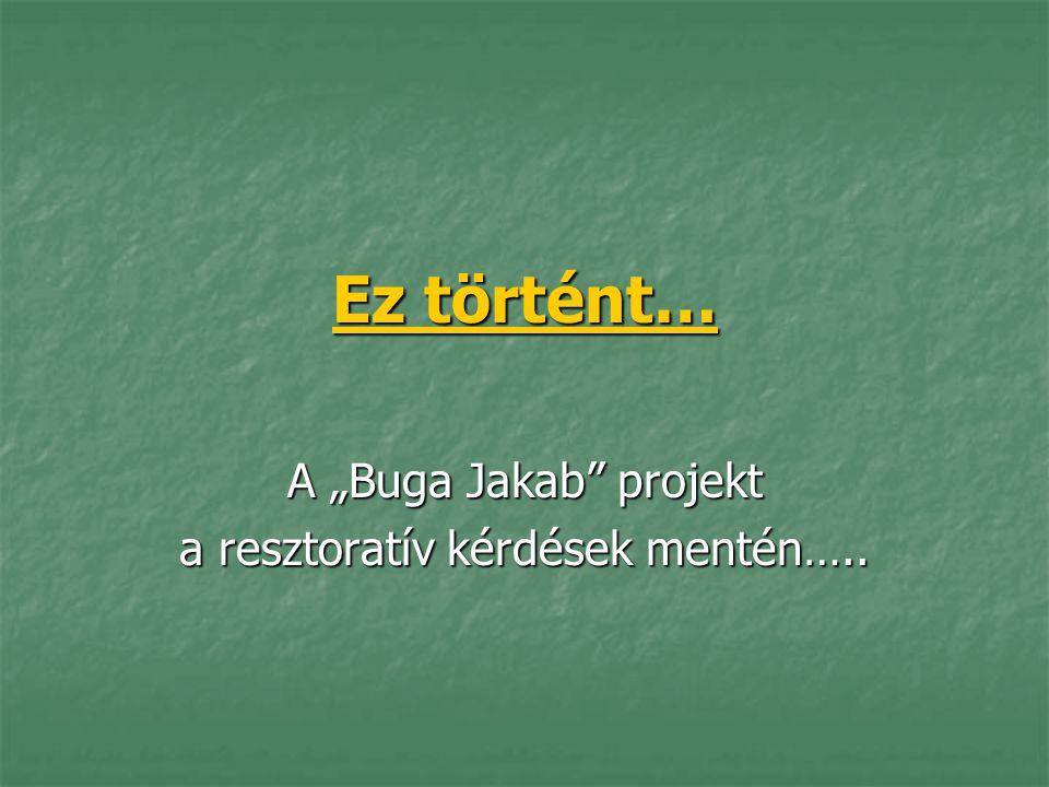 """Ez történt… A """"Buga Jakab"""" projekt a resztoratív kérdések mentén….."""