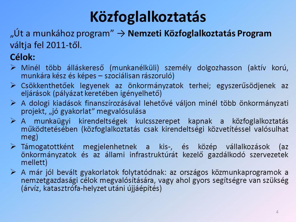 """Közfoglalkoztatás """"Út a munkához program → Nemzeti Közfoglalkoztatás Program váltja fel 2011-től."""