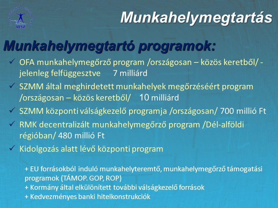 """""""A munkahelyek megőrzéséért program Forrása: a Munkaerő-piaci Alap foglalkoztatási alaprész Forrása: a Munkaerő-piaci Alap foglalkoztatási alaprész Keret: 10 milliárd Ft Keret: 10 milliárd Ft Megvalósítói: regionális munkaügyi központok Megvalósítói: regionális munkaügyi központok Pályázói kör: munkáltatók és álláskeresők Pályázói kör: munkáltatók és álláskeresők Célja: annak megakadályozása, hogy a vállalkozások az átmenetileg feleslegessé vált munkavállalóikat elbocsássák Célja: annak megakadályozása, hogy a vállalkozások az átmenetileg feleslegessé vált munkavállalóikat elbocsássák A program támogatási moduljai: A program támogatási moduljai: 1."""