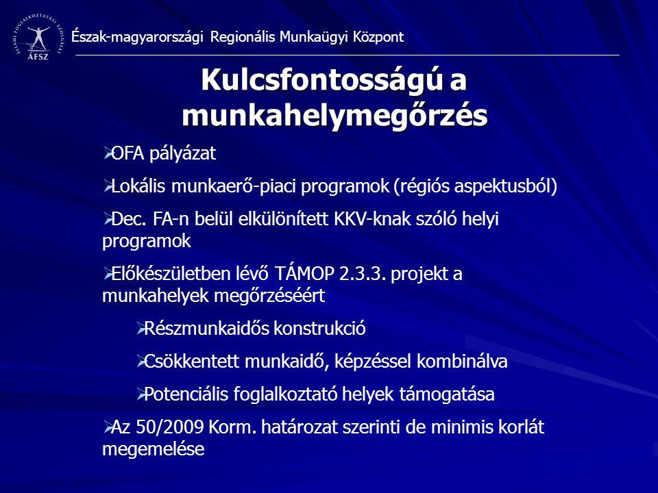 Észak-magyarországi Regionális Munkaügyi Központ Kulcsfontosságú a munkahelymegőrzés  OFA pályázat  Lokális munkaerő-piaci programok (régiós aspektusból)  Dec.