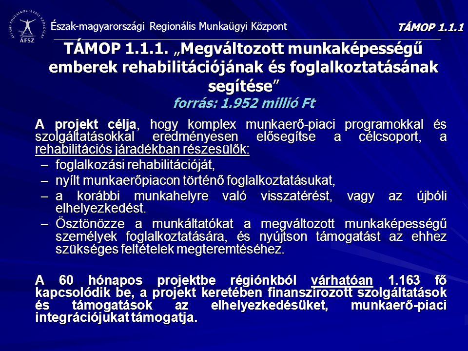 """Észak-magyarországi Regionális Munkaügyi Központ TÁMOP 1.1.1. """"Megváltozott munkaképességű emberek rehabilitációjának és foglalkoztatásának segítése"""""""