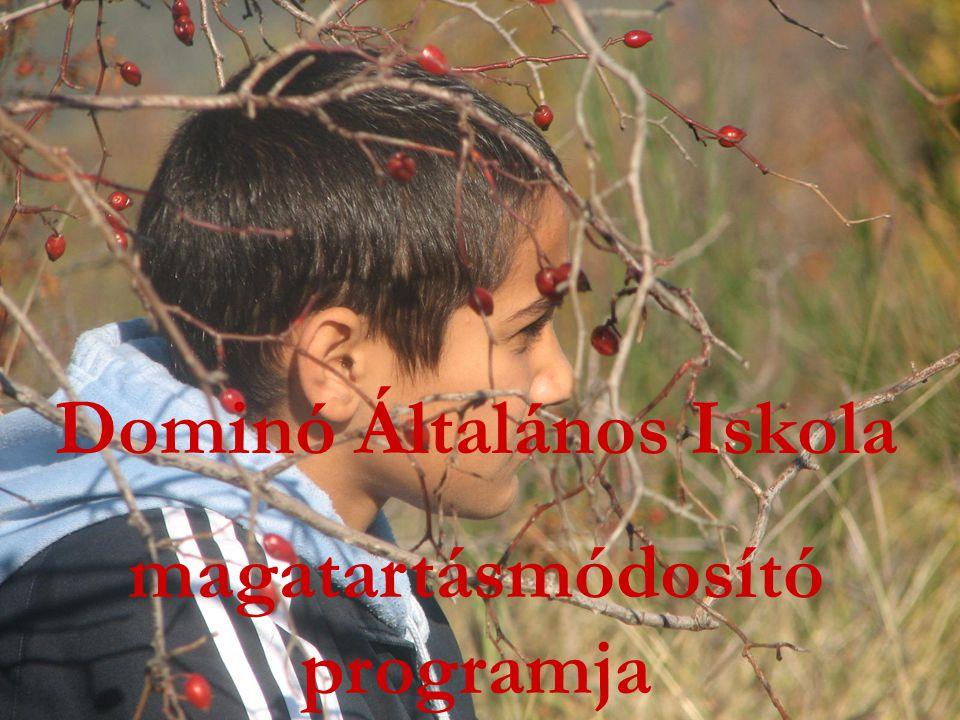 Dominó Általános Iskola magatartásmódosító programja