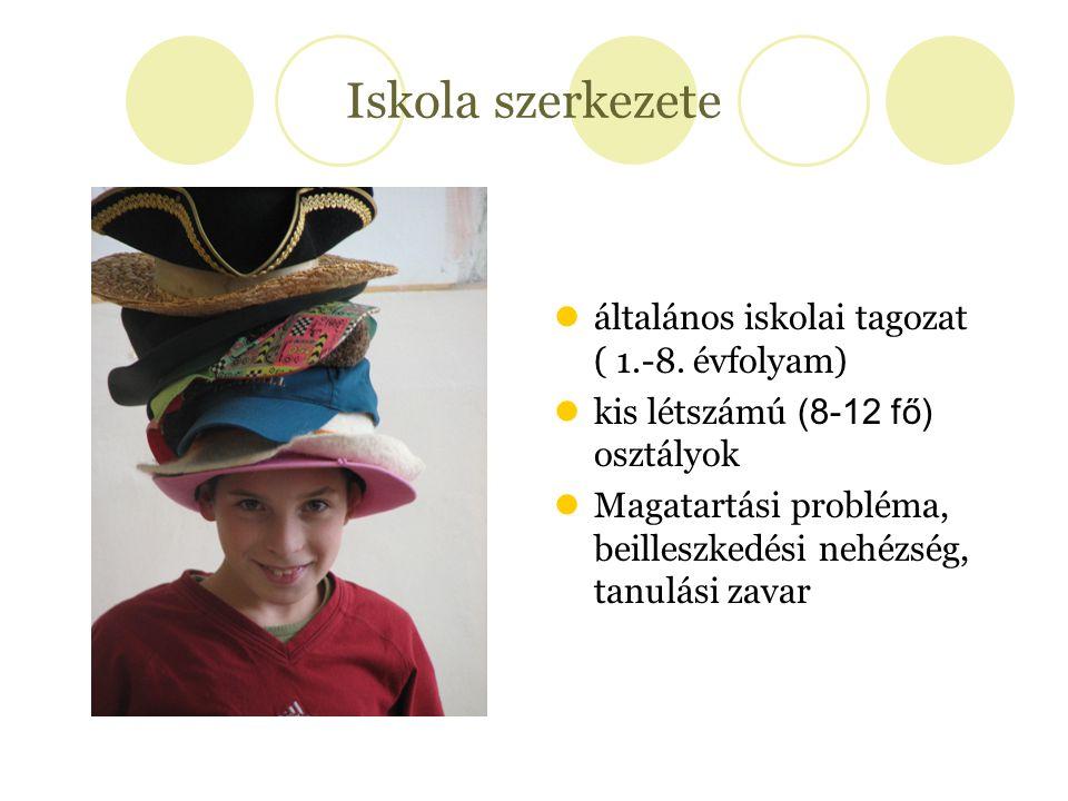 Iskola szerkezete általános iskolai tagozat ( 1.-8. évfolyam) kis létszámú (8-12 fő) osztályok Magatartási probléma, beilleszkedési nehézség, tanulási