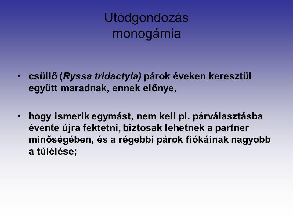 Utódgondozás monogámia csüllő (Ryssa tridactyla) párok éveken keresztül együtt maradnak, ennek előnye, hogy ismerik egymást, nem kell pl. párválasztás