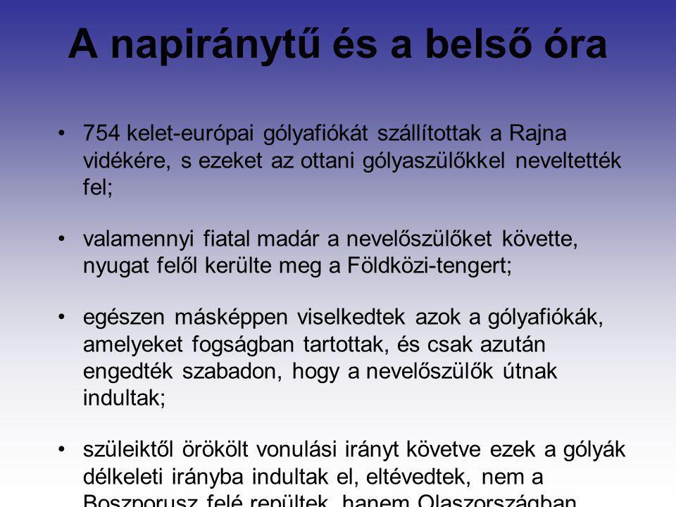A napiránytű és a belső óra 754 kelet-európai gólyafiókát szállítottak a Rajna vidékére, s ezeket az ottani gólyaszülőkkel neveltették fel; valamennyi