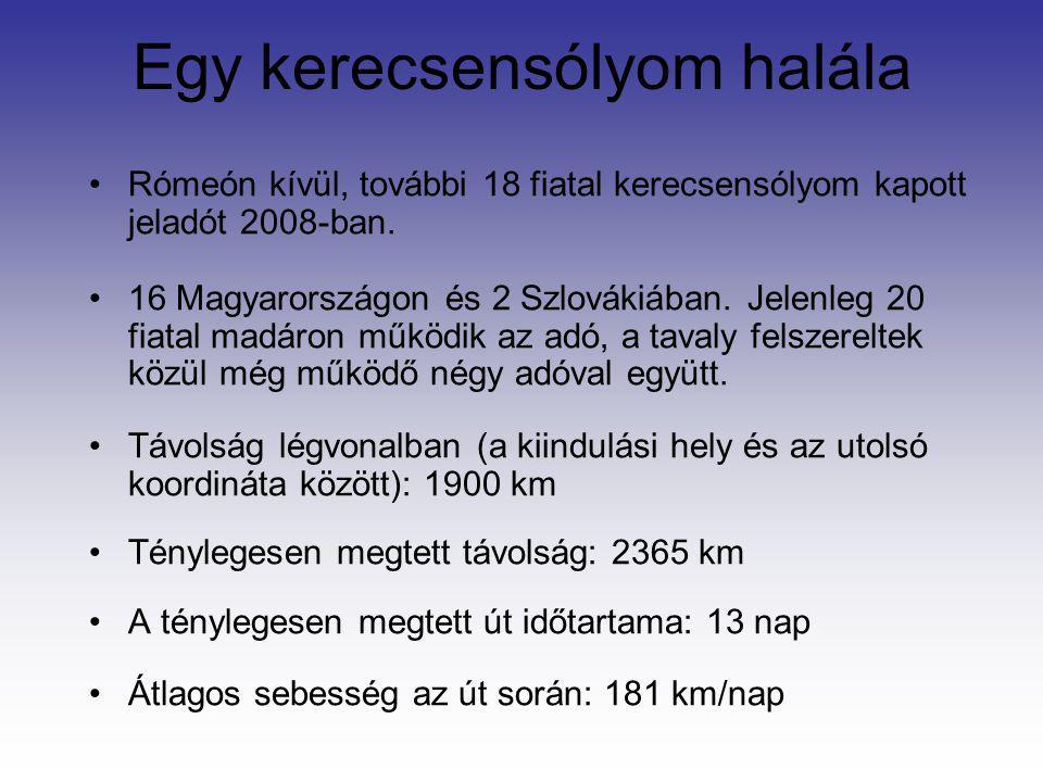 Egy kerecsensólyom halála Rómeón kívül, további 18 fiatal kerecsensólyom kapott jeladót 2008-ban. 16 Magyarországon és 2 Szlovákiában. Jelenleg 20 fia