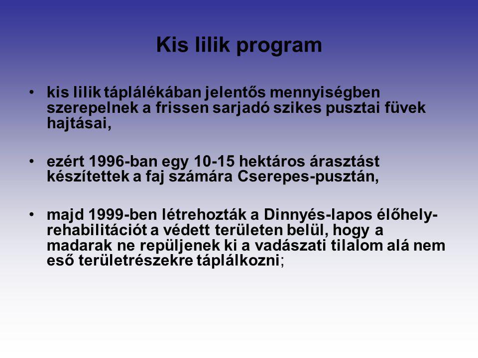 Kis lilik program kis lilik táplálékában jelentős mennyiségben szerepelnek a frissen sarjadó szikes pusztai füvek hajtásai, ezért 1996-ban egy 10-15 h