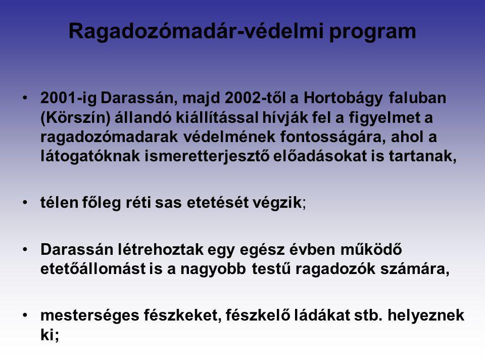 Ragadozómadár-védelmi program 2001-ig Darassán, majd 2002-től a Hortobágy faluban (Körszín) állandó kiállítással hívják fel a figyelmet a ragadozómada