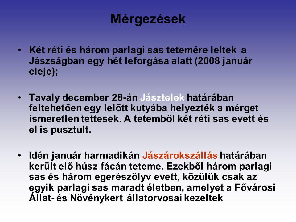 Mérgezések Két réti és három parlagi sas tetemére leltek a Jászságban egy hét leforgása alatt (2008 január eleje); Tavaly december 28-án Jásztelek hat