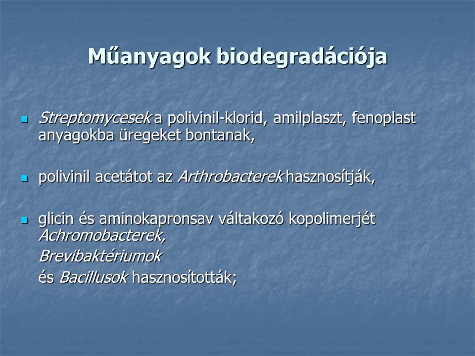 Műanyagok biodegradációja Streptomycesek a polivinil-klorid, amilplaszt, fenoplast anyagokba üregeket bontanak, Streptomycesek a polivinil-klorid, ami