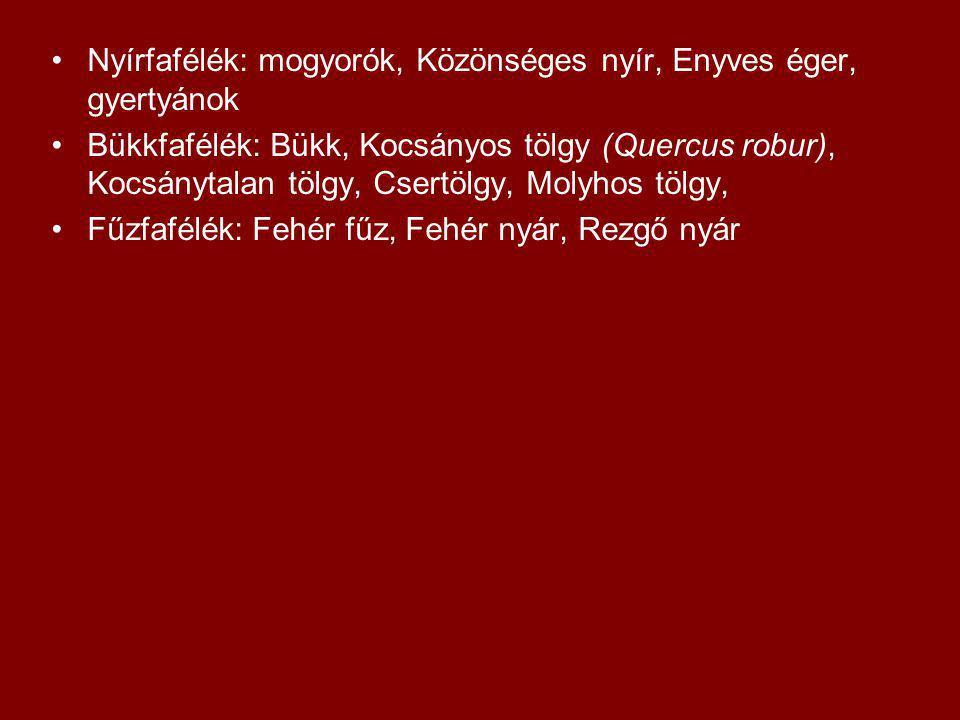 Nyírfafélék: mogyorók, Közönséges nyír, Enyves éger, gyertyánok Bükkfafélék: Bükk, Kocsányos tölgy (Quercus robur), Kocsánytalan tölgy, Csertölgy, Mol