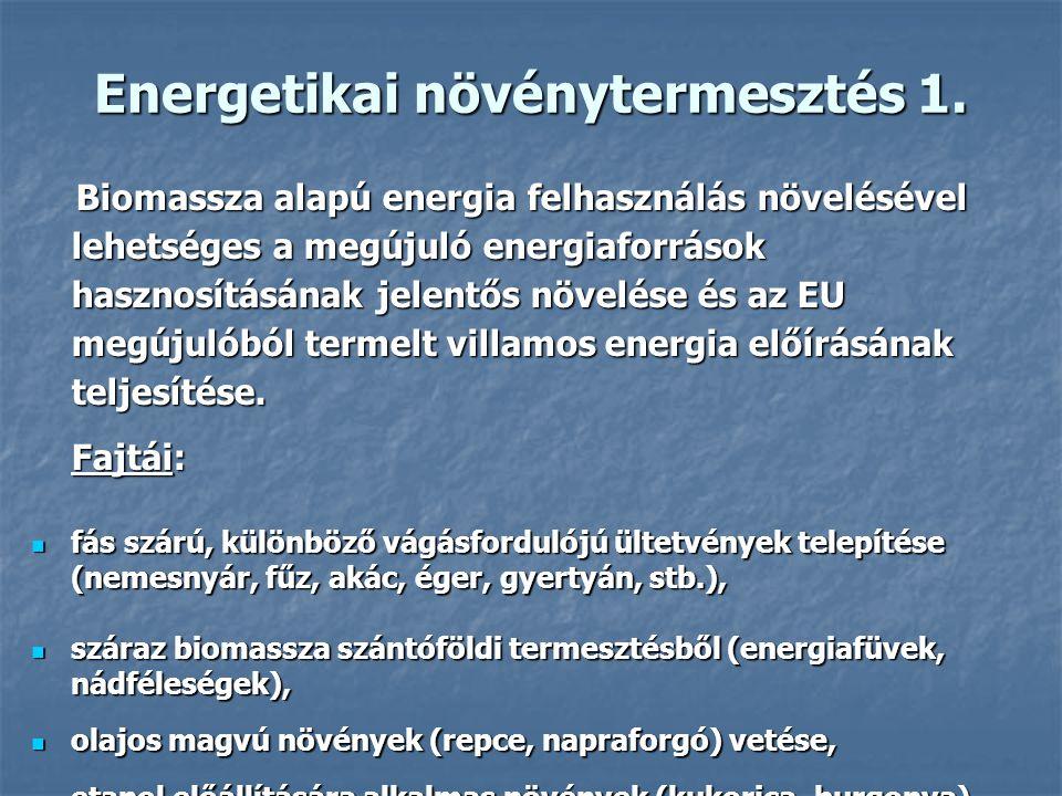 Energetikai növénytermesztés 1. Biomassza alapú energia felhasználás növelésével lehetséges a megújuló energiaforrások hasznosításának jelentős növelé