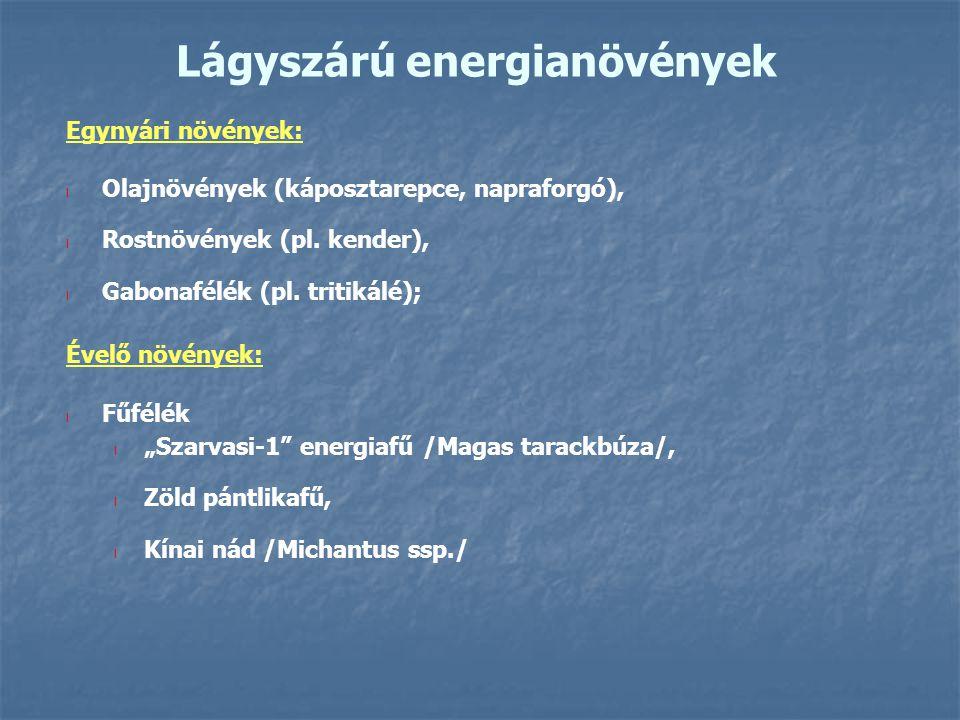 Lágyszárú energianövények Egynyári növények: l Olajnövények (káposztarepce, napraforgó), l Rostnövények (pl. kender), l Gabonafélék (pl. tritikálé); É