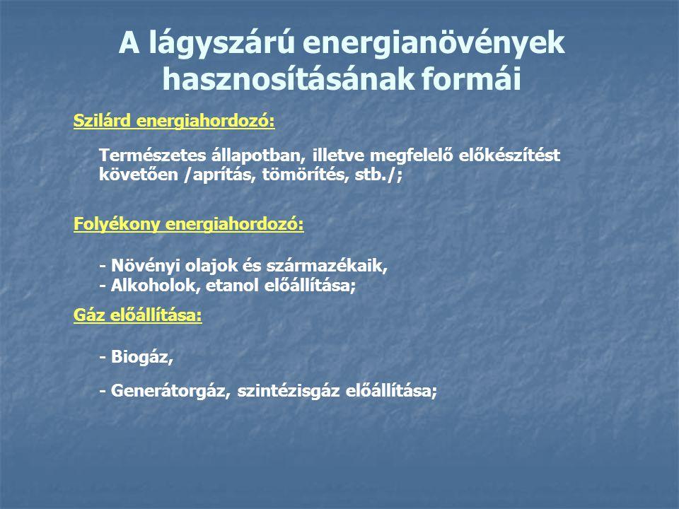 A lágyszárú energianövények hasznosításának formái Szilárd energiahordozó: Természetes állapotban, illetve megfelelő előkészítést követően /aprítás, t