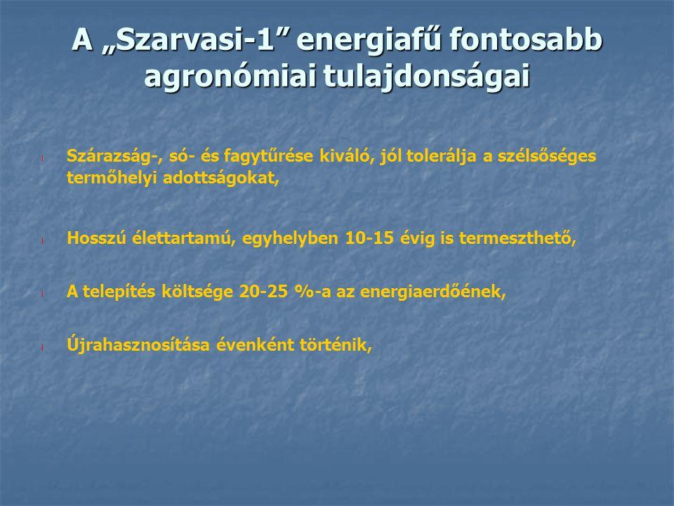 """A """"Szarvasi-1"""" energiafű fontosabb agronómiai tulajdonságai l Szárazság-, só- és fagytűrése kiváló, jól tolerálja a szélsőséges termőhelyi adottságoka"""