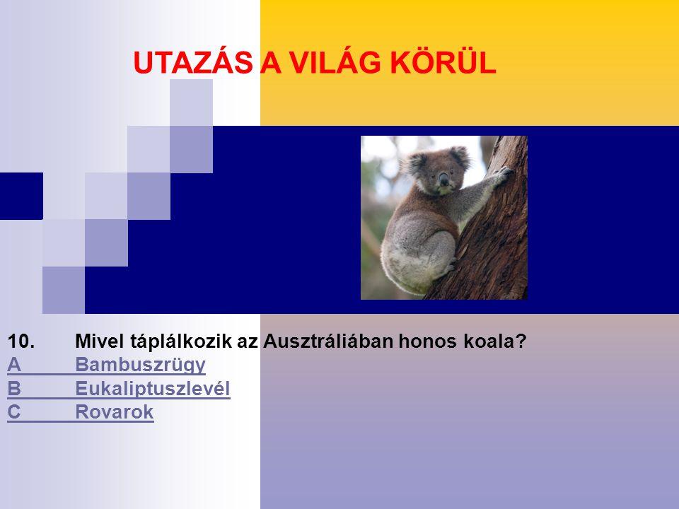 10.Mivel táplálkozik az Ausztráliában honos koala.