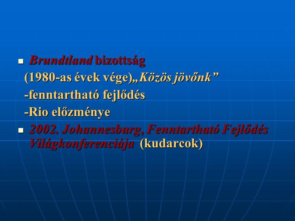 """Brundtland bizottság Brundtland bizottság (1980-as évek vége)""""Közös jövőnk"""" (1980-as évek vége)""""Közös jövőnk"""" -fenntartható fejlődés -fenntartható fej"""