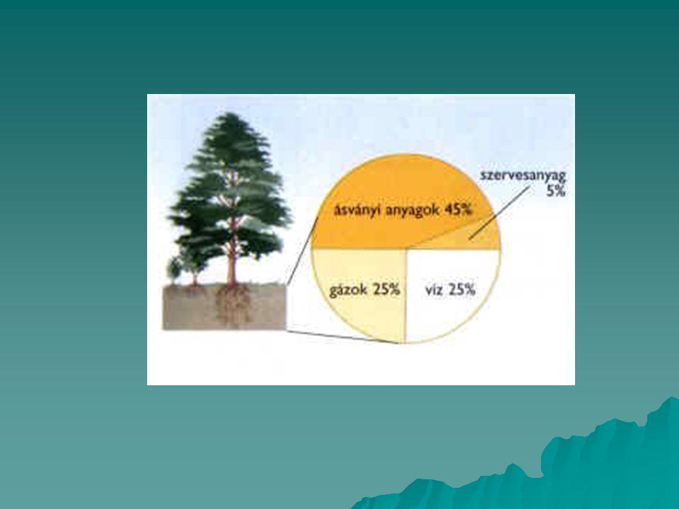 Fizikai aprózódás  Típusai:  Inszoláció: napi hőingás hatása (sivatagi területek)  Fagyhatás: fagypont körüli hőmérséklet- ingadozásnál a legjelentősebb (mérsékelt égövi területek)  Sókiválások: ha a talajvíz oldott sókat tartalmaz  Növényi gyökerek repesztő hatása