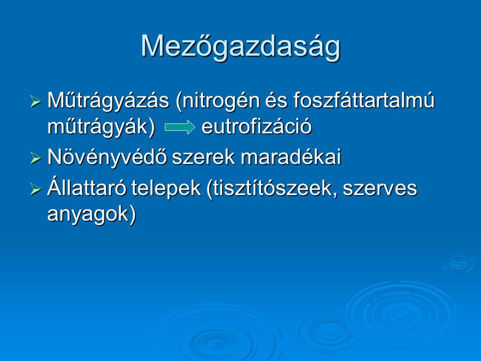 Mezőgazdaság  Műtrágyázás (nitrogén és foszfáttartalmú műtrágyák) eutrofizáció  Növényvédő szerek maradékai  Állattaró telepek (tisztítószeek, szer