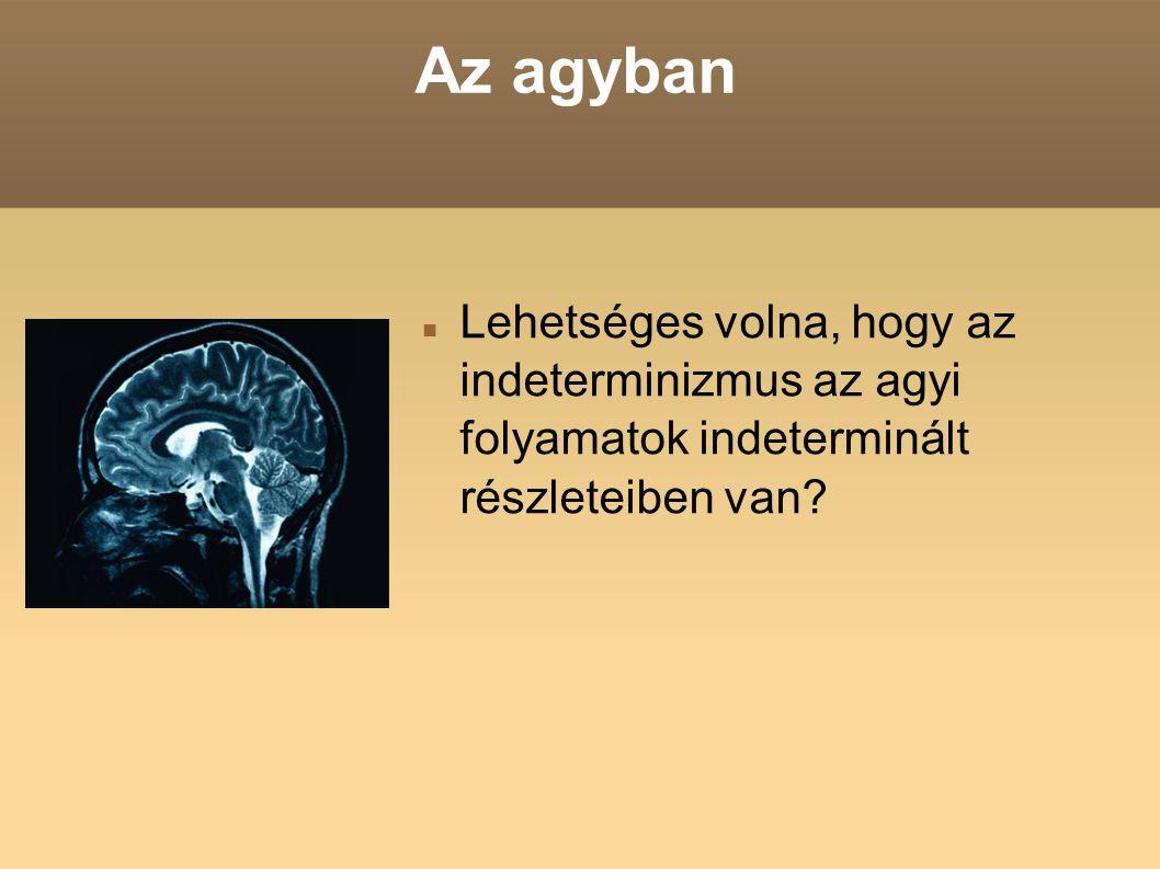 Az agyban Lehetséges volna, hogy az indeterminizmus az agyi folyamatok indeterminált részleteiben van?
