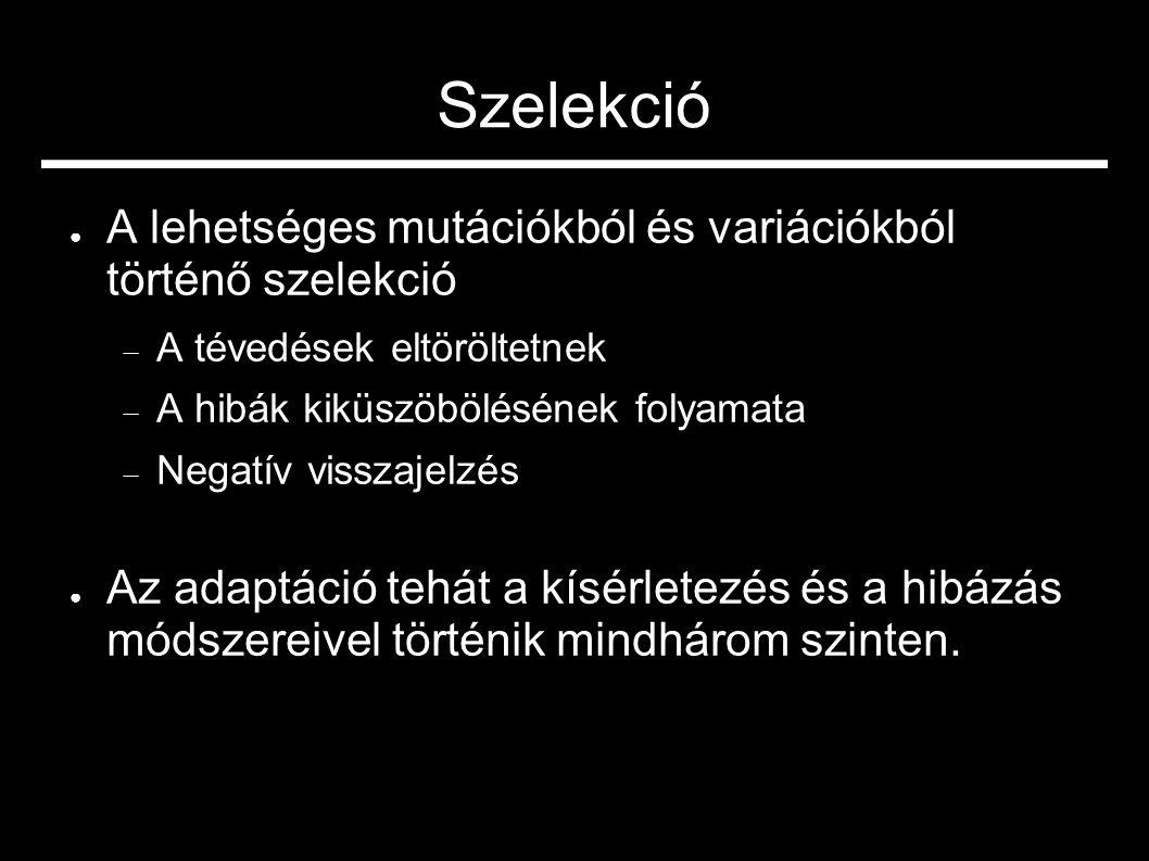 Szelekció ● A lehetséges mutációkból és variációkból történő szelekció  A tévedések eltöröltetnek  A hibák kiküszöbölésének folyamata  Negatív viss