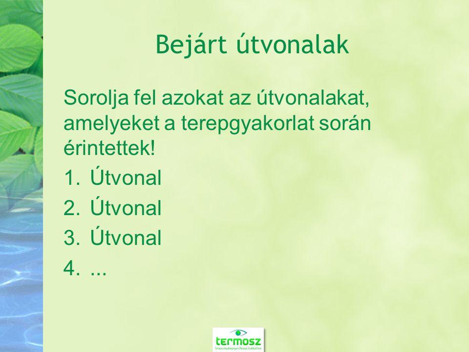 Felhasznált módszerek Sorolja fel a felhasznált módszereket.