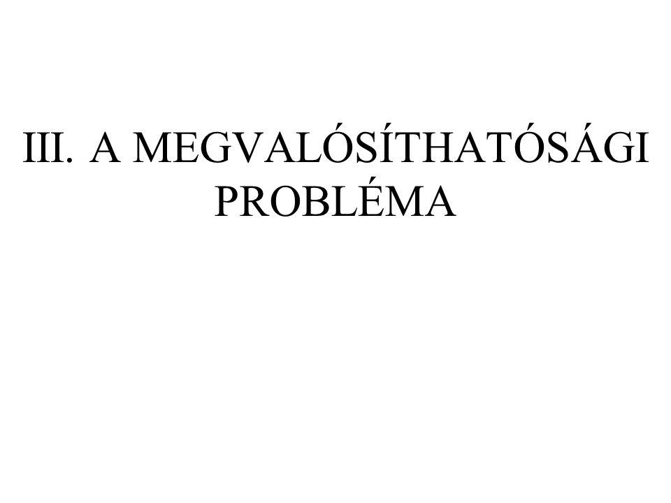 III. A MEGVALÓSÍTHATÓSÁGI PROBLÉMA