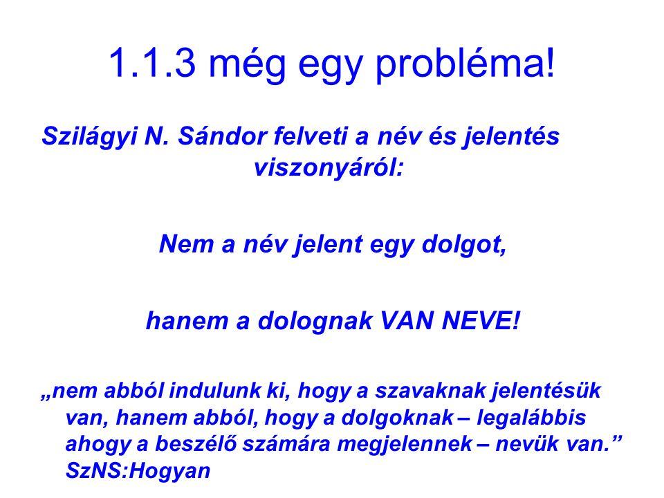 """1.1.3 még egy probléma! Szilágyi N. Sándor felveti a név és jelentés viszonyáról: Nem a név jelent egy dolgot, hanem a dolognak VAN NEVE! """"nem abból i"""