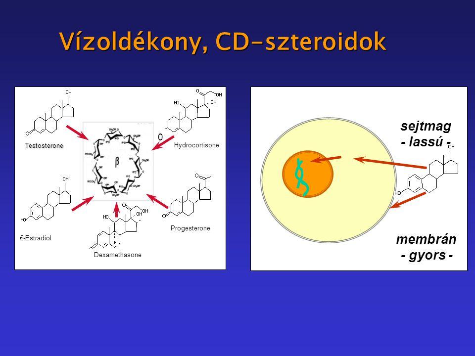 Vízoldékony, CD-szteroidok Testosterone Dexamethasone 0 Progesterone Hydrocortisone  -Estradiol membrán - gyors - sejtmag - lassú -