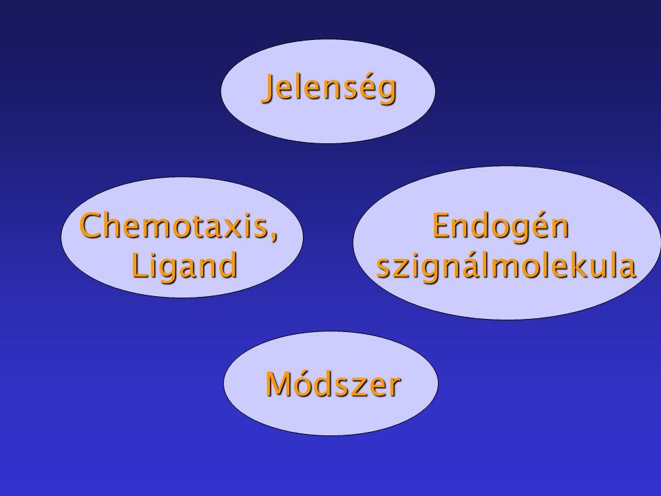 Jelenség Chemotaxis,LigandEndogén szignálmolekula szignálmolekula Módszer