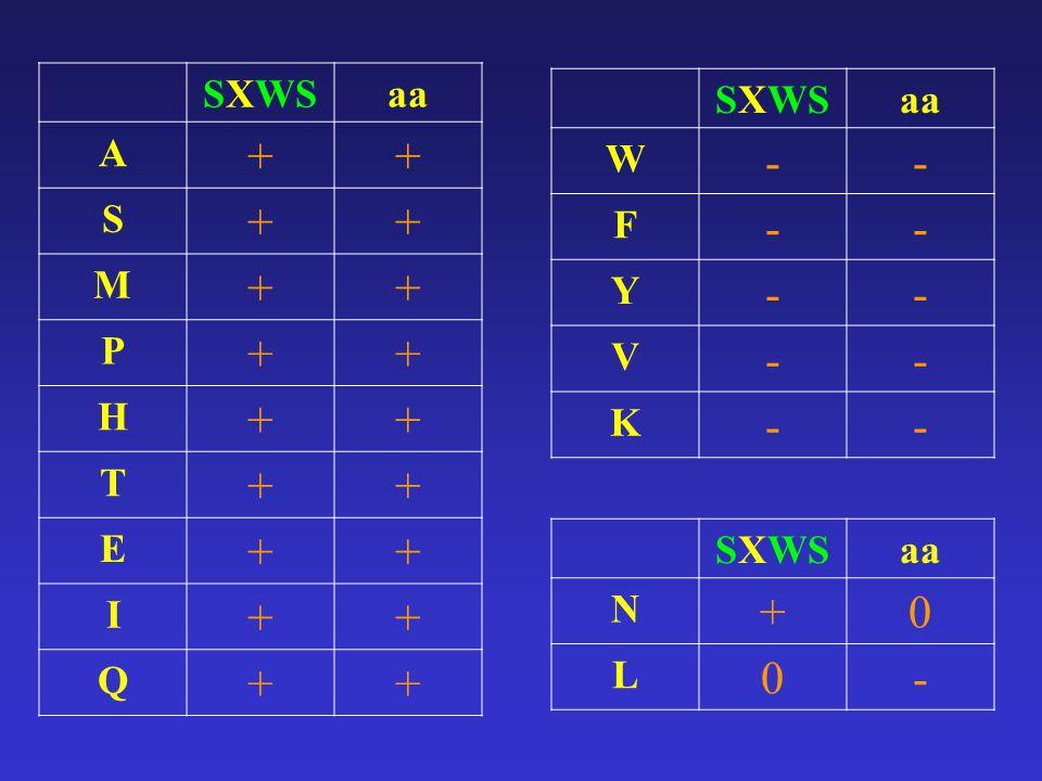SXWSaa A ++ S ++ M ++ P ++ H ++ T ++ E ++ I ++ Q ++ SXWSaa W -- F -- Y -- V -- K -- SXWSaa N +0 L 0-