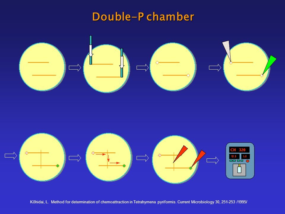 Double-P chamber Kőhidai, L. Method for determination of chemoattraction in Tetrahymena pyriformis. Current Microbiology 30, 251-253 /1995/