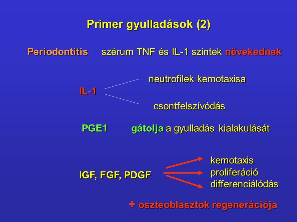 Periodontitisszérum TNF és IL-1 szintek növekednek IL-1 neutrofilek kemotaxisa csontfelszívódás PGE1gátolja a gyulladás kialakulását IGF, FGF, PDGF ke