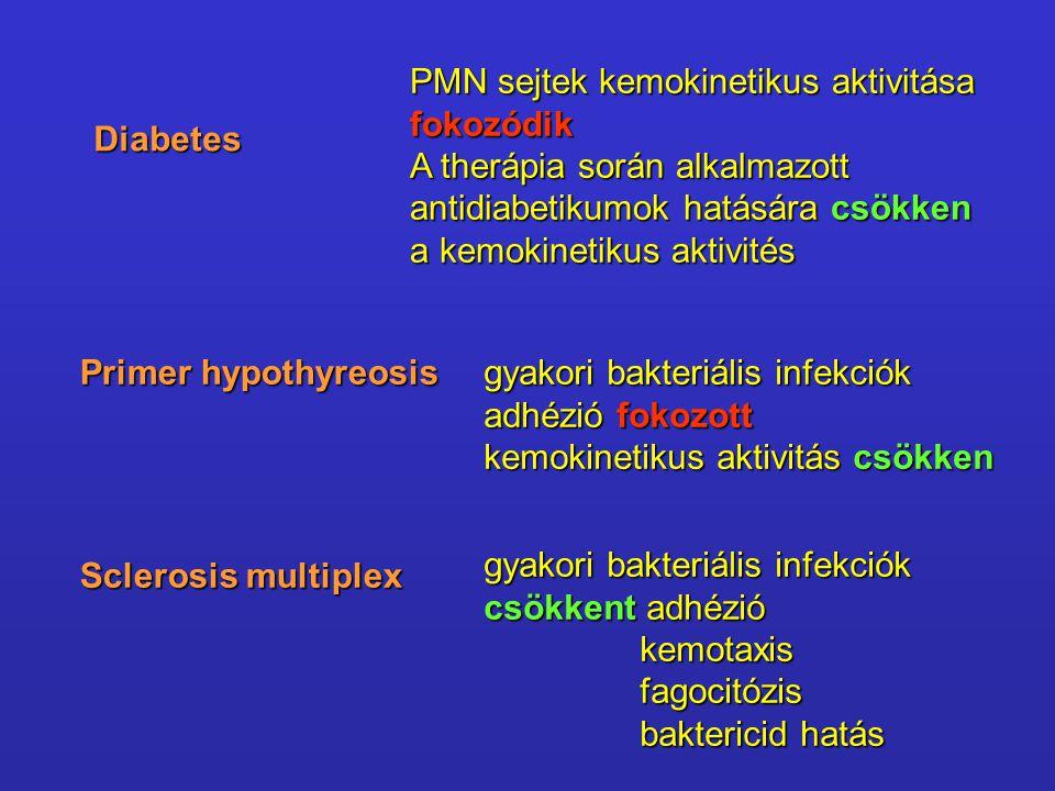 Diabetes PMN sejtek kemokinetikus aktivitása fokozódik A therápia során alkalmazott antidiabetikumok hatására csökken a kemokinetikus aktivités Primer