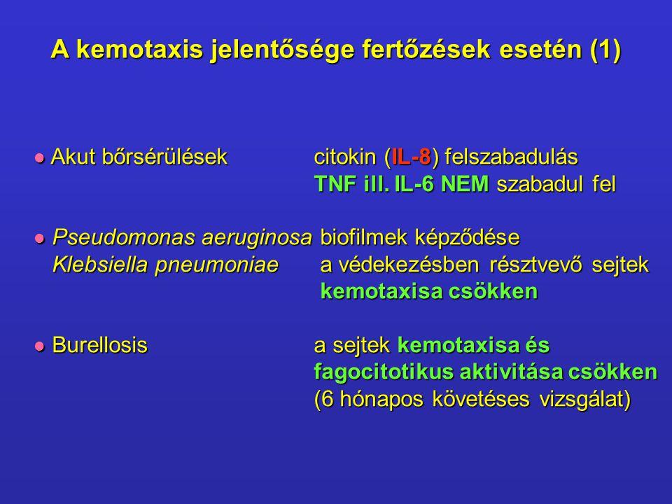 A kemotaxis jelentősége fertőzések esetén (1) Akut bőrsérülésekcitokin (IL-8) felszabadulás Akut bőrsérülésekcitokin (IL-8) felszabadulás TNF ill. IL-