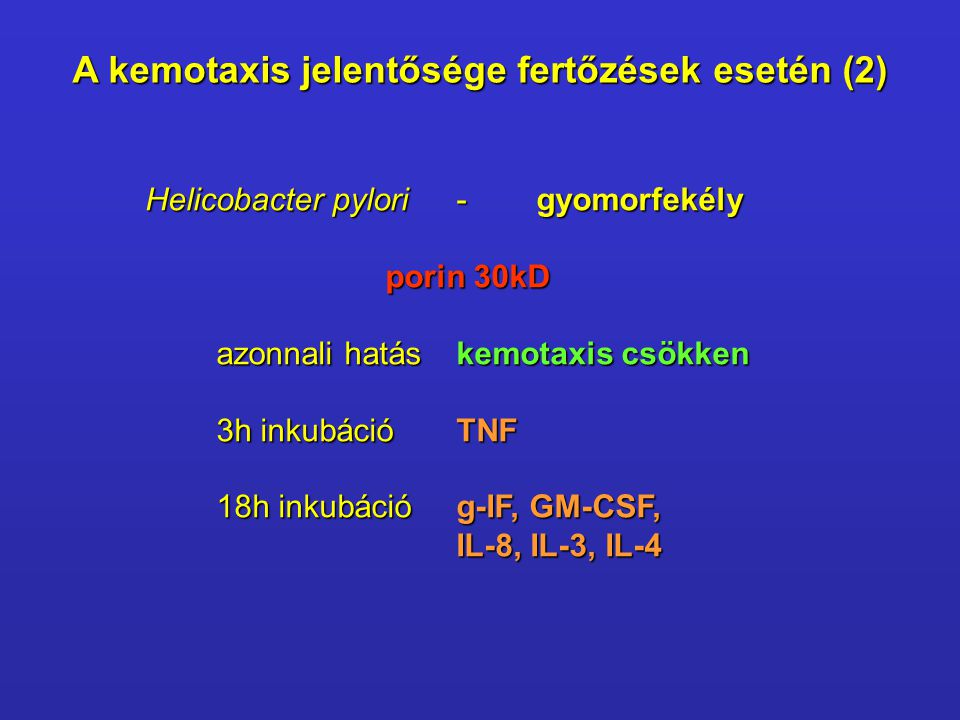 A kemotaxis jelentősége fertőzések esetén (2) Helicobacter pylori-gyomorfekély Helicobacter pylori-gyomorfekély porin 30kD porin 30kD azonnali hatás kemotaxis csökken 3h inkubációTNF 18h inkubációg-IF, GM-CSF, IL-8, IL-3, IL-4