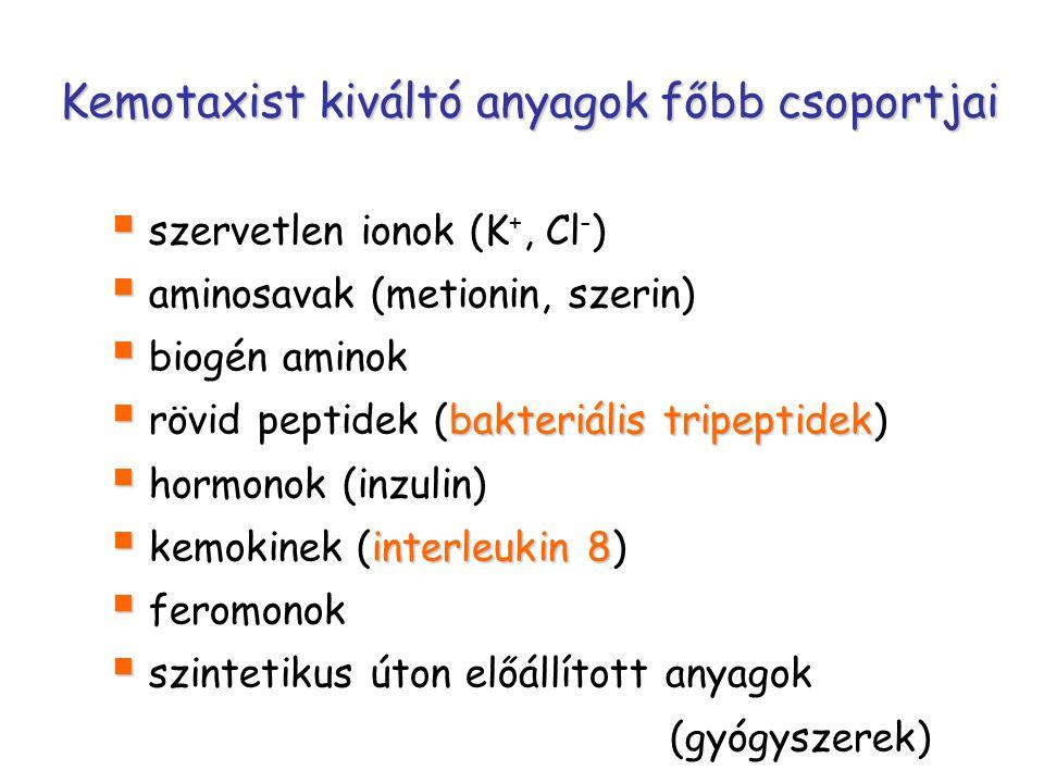 Kemotaxist kiváltó anyagok főbb csoportjai   szervetlen ionok (K +, Cl - )   aminosavak (metionin, szerin)   biogén aminok  bakteriális tripeptidek  rövid peptidek (bakteriális tripeptidek)   hormonok (inzulin)  interleukin 8  kemokinek (interleukin 8)   feromonok   szintetikus úton előállított anyagok (gyógyszerek)