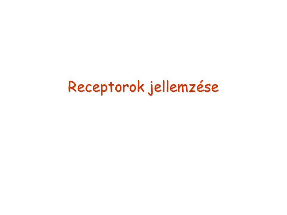 Receptorok jellemzése