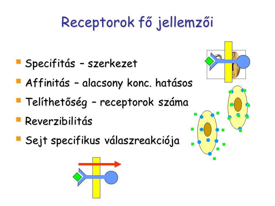 Receptorok fő jellemzői  Specifitás – szerkezet  Affinitás – alacsony konc.