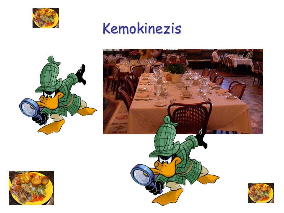Kemokinezis