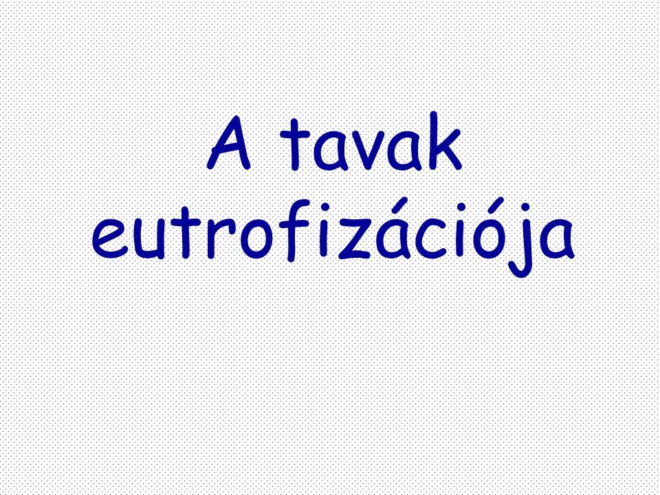 A tavak eutrofizációja